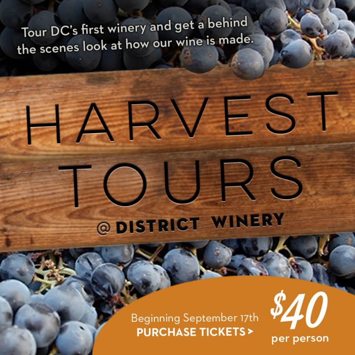Now Booking Harvest Tours!