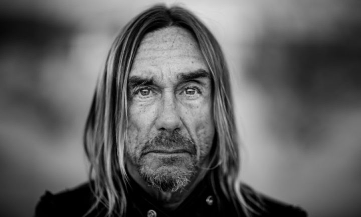 Iggy Pop to play Bluesfest 2019, Farmer & The Owl unveil inaugural lineup, introducing Flogging Molly